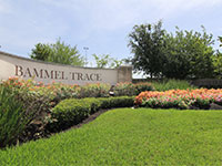 Bammel Trace Townhomes